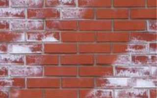 Причины образования высолов и разрушения стен зданий